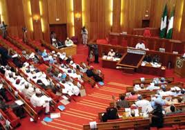 Senate condemns Wase killings …meets military high command
